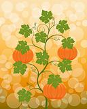 Floral background with a pumpkin. Vector illustration.
