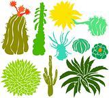 Cactus set 02