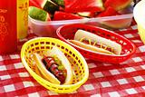 Hot Dog Picnic