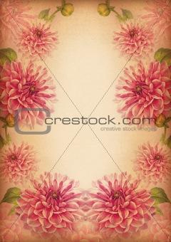 chrysanthemum flower frame or border