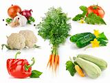 set fresh vegetables with green leaves