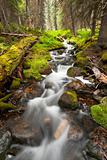 little rapid in creek