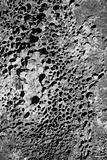 Igneous rock detail.