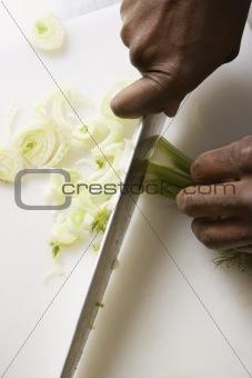 Knife chopping fennel.
