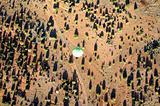 Balloon and Sagebrush, Sedona, Arizona