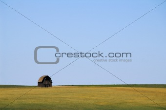 Barn in a Field, Near Tum Tum, Washington, USA