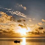 Zanzibar sunrise