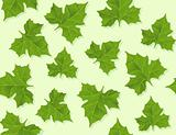 background seamless pattern of green leaves