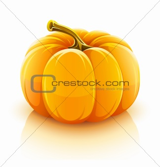 orange pumpkin vegetable