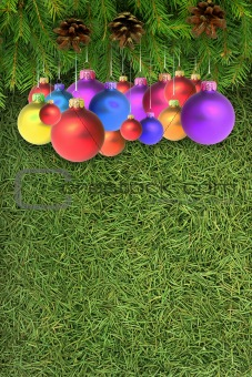 Branches with a Christmas toy