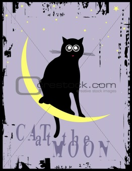 cat at the moon