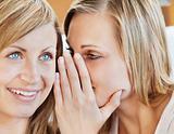 Portrait of two female friends telling secrets