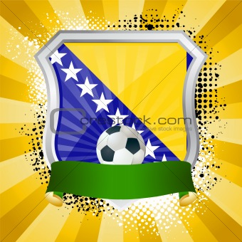 Shiny metal shield on bright background with flag of Bosnia and