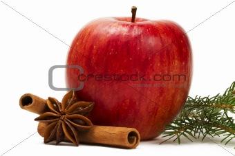 apple star anise cinnamon sticks branch