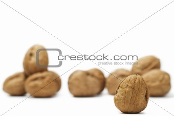 focus on a walnut in front of others
