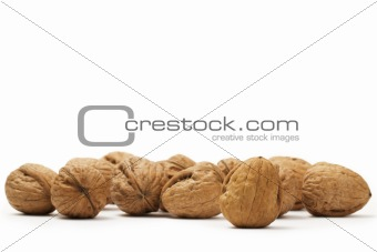 a lot of walnuts
