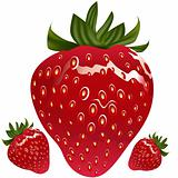 Realistic Strawberry