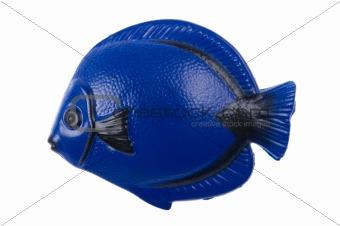 fish magnet macro