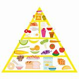 food pyramid, vector