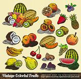 Vintage Colorful Fruits Collection