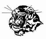 Vector head of an aggressive tiger