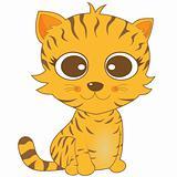 cute looking brown stripe cat with big eyes