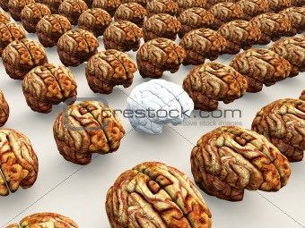 Odd Brain Out