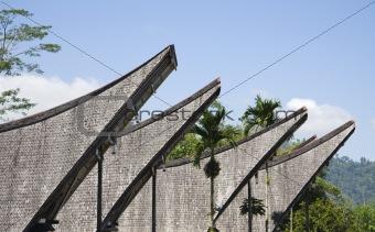Toraja house roofs