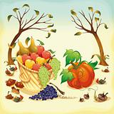 Fruit and vegetables in Autumn.