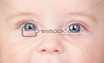 Beautiful babe with blue eyes