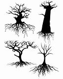 Four different Old tree Silhouettes with roots