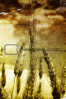 Grunge grain