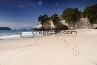 Cathedral Cove (Te Whanganui-A-Hei)