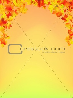 Autumn Fall background