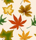 Autumn concept seamless background. Vector