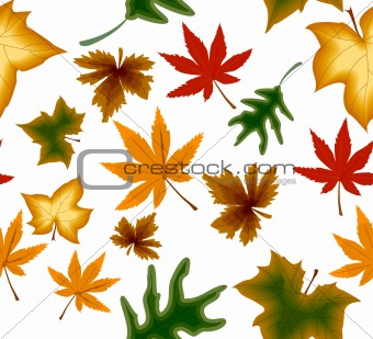 Autumnal concept seamless background. Vector