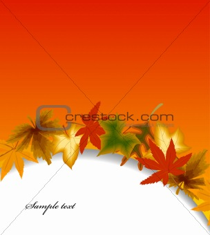 Autumn vector background with leaf