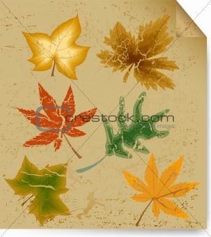 Autumn art leaf vintage background. Vector