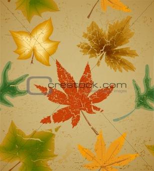Autumn art leaf vintage seamless background