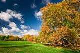 Autumn in Hyde Park, London.