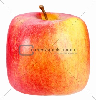 Single square red-yellow apple