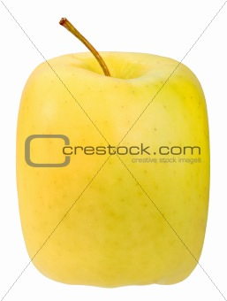 Single square yellow apple