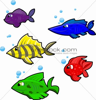 5 colorful cartoon fish on white background