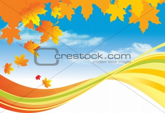 Autumn Background /  gold leaves and blue sky