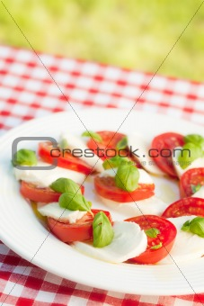 caprese salad on white plate