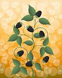Floral background with a blackberry. Vector illustration.