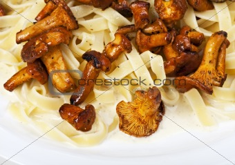 fresh chanterelles isolated on white background
