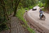 Path and road near Monteverde Costa Rica