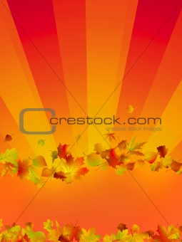 Autumn vector background