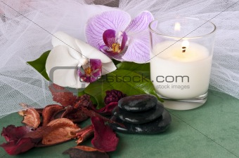 fragrances ecological